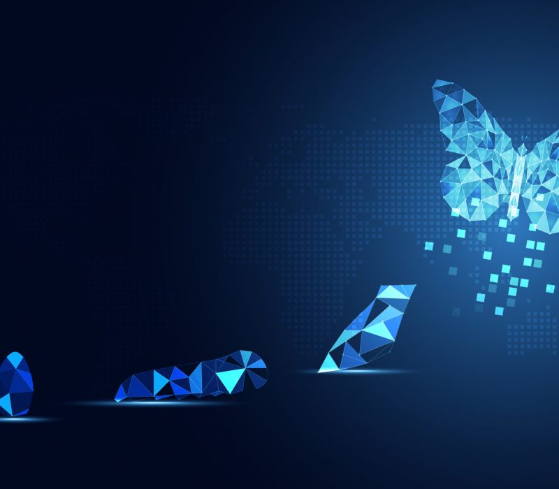 Abstract Business digital transformation innovative of butterfly life cycle evolution blue background. Renewal and Powerful transformation metamorphosis concept. Lightness of being and playfulness